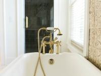 Traditional-Bathroom-Shower-and-Tub.jpg