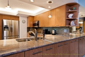 Nelson Construction Luxury Home Project