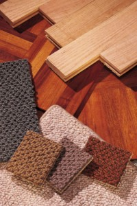 different kinds of wood samples