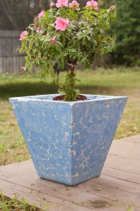 beautiful concrete planter for outdoor use